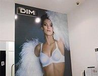 Прикассовый постер для магазина Dim, картинка